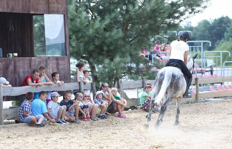 W stadninie koni w Skaryszewie pod Radomiem, zwłaszcza w wakacje wciąż jest dużo dzieci. W środę odwiedzili ją młodzi mieszkańcy gminy, którzy latem