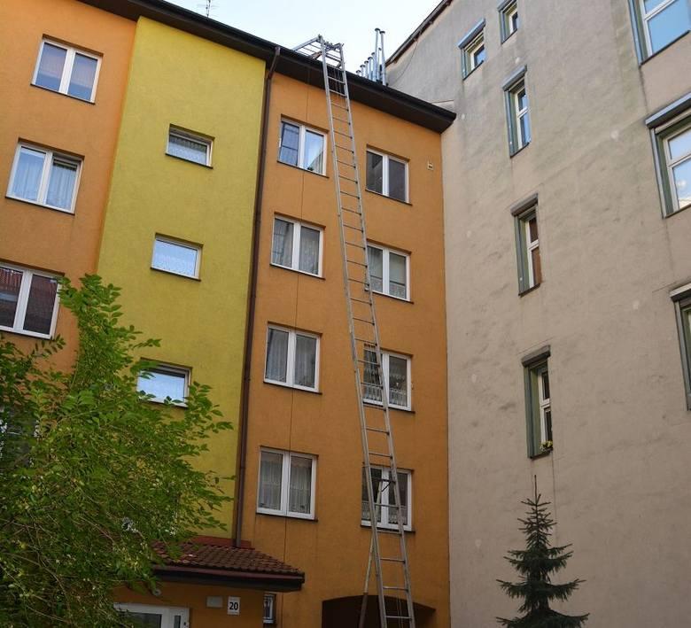 Miejscem realizacji zakładu był budynek przy ulicy Czarnieckiego w Stargardzie