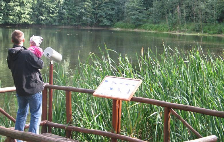 Barbarka to jedno z niewielu miejsc w okolicach Torunia, w których można posiedzieć w lesie i nad wodą