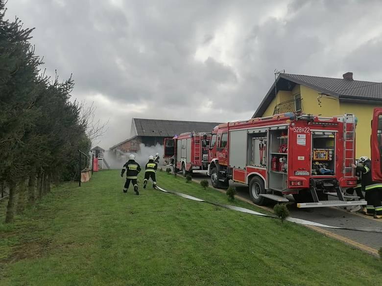 W niedzielę wybuchł pożar w miejscowości Pełnatycze w powiecie przeworskim. Palił się budynek gospodarczy. Pożar ugasili strażacy z PSP Przeworsk, OSP