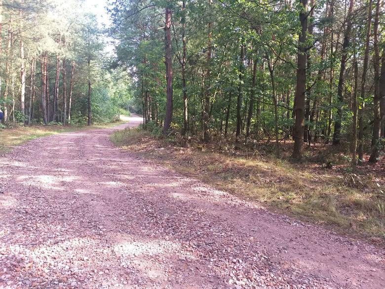 Remonty dróg gruntowych odbywają się na terenie całej gminy.