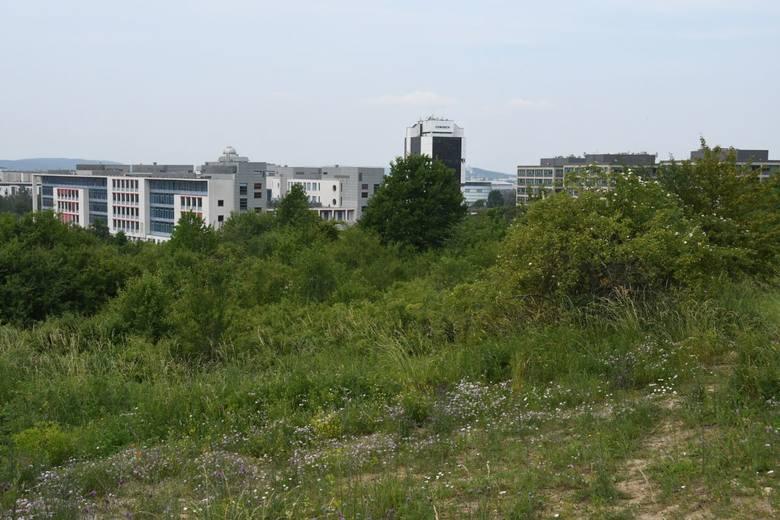 Trzy nowe biurowce powstaną w Kielcach! To będą nowe siedziby ważnych urzędów. Zobacz plany