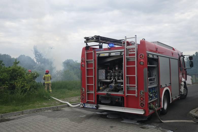 Tylko w weekend w Wielkopolsce strażacy musieli ugasić 100 pożarów. - Mówimy o większych interwencjach, w których brały udział co najmniej trzy zastępy