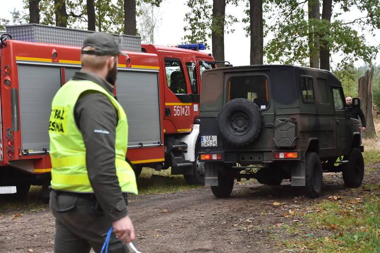 Wybuch bomby w lesie w Kuźni Raciborskiej. Czy saperzy zamiast wywieźć pociski detonowali je w kuźniańskim lesie?