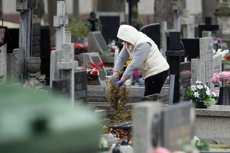 Dzień Wszystkich Świętych. Trwają porządki na lubelskich cmentarzach