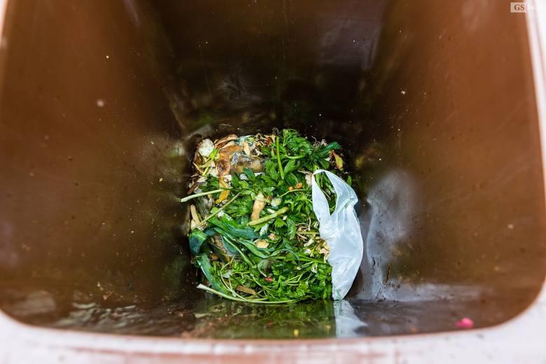 Nowe zasady segregacji śmieci w Szczecinie. Są dobre i gorsze wiadomości