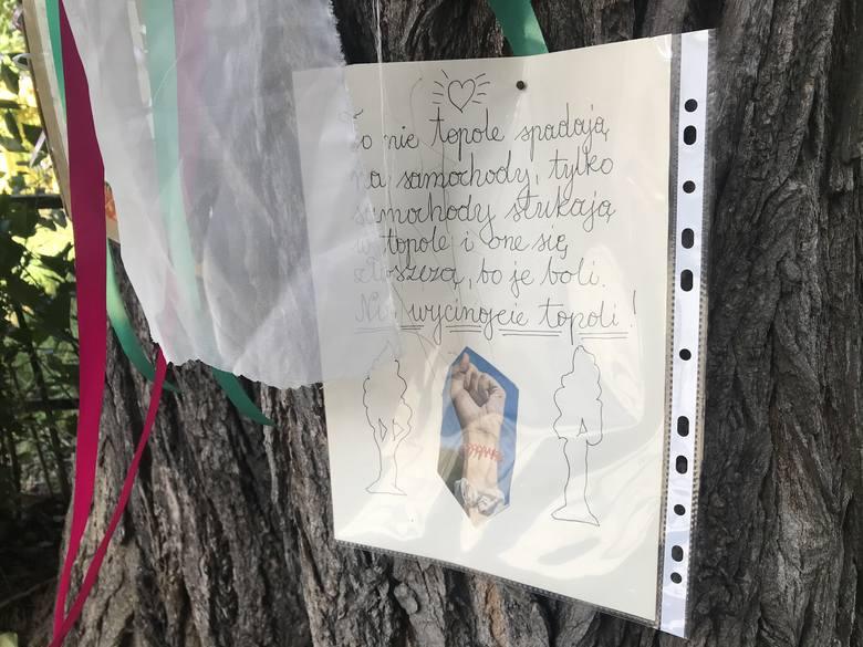 Z Sępolna znikają topole. Matka Boska ich nie obroniła