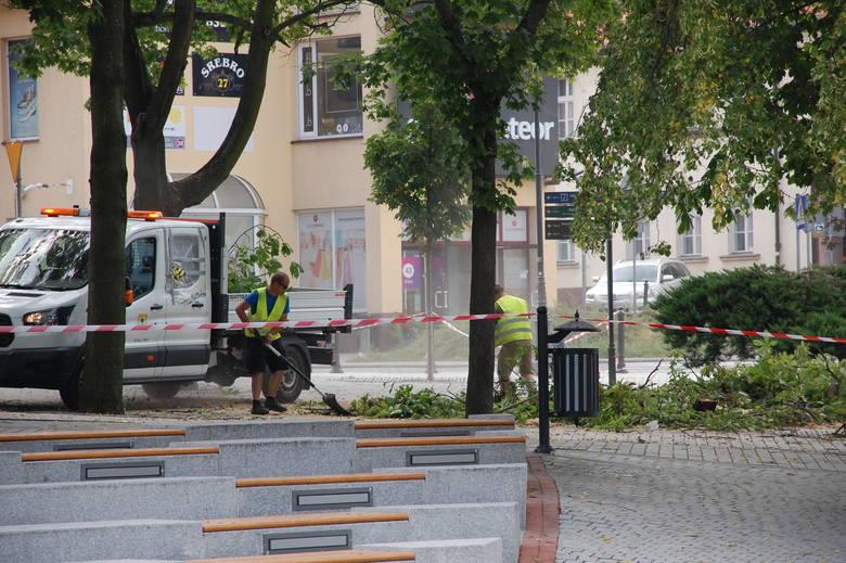 Prezes ZGKiM zapewnia, że drzewo musiało zostać wycięte ze względu na dobro mieszkańców