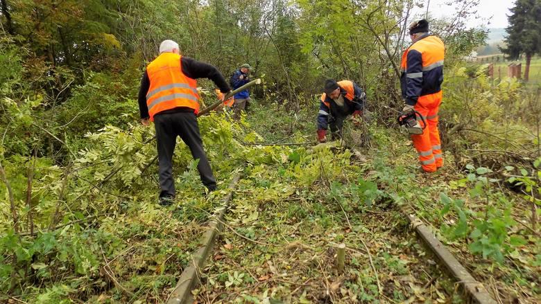 Rozpoczęła się I Siekierezada Bieszczadzka w Przemyślu. Celem akcji jest oczyszczenie torów kolejowych, nieużytkowanej od kilkunastu lat linii kolejowej
