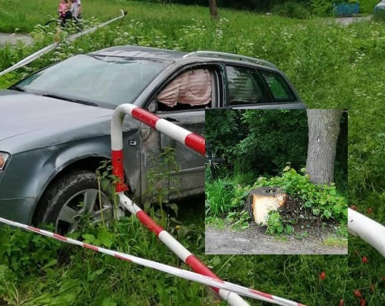 Matka i 4-letnie dziecko mogły zginąć przez pień drzewa na poboczu. Urzędnicy przerzucają się teraz odpowiedzialnością
