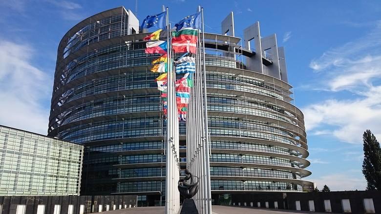 Enter Polexitu, czyli jakie komitety wyborcze chcą wejść do Parlamentu Europejskiego