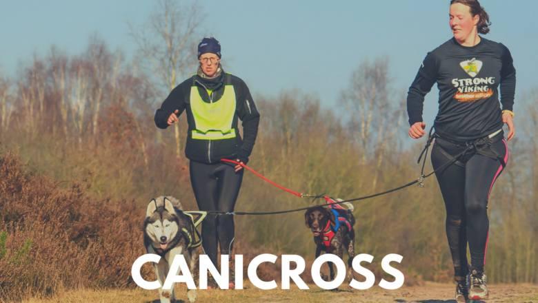 Lubisz biegać? Jeśli tak, to canicrossing jest dla ciebie! To dyscyplina, która polega na bieganiu z psem przypiętym do właściciela za pomocą uprzęży.