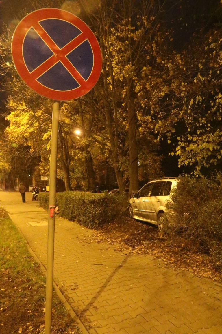 Na Osobowickiej samochód uderzył w drzewo (ZDJĘCIA)