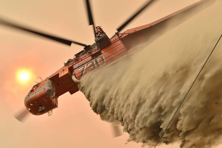 Pożary w Australii [ZDJĘCIA] [WIDEO] Giną ludzie i misie koala. Ogień naciera na Sydney, zniszczone zostało miasteczko Balmoral [MAPA]