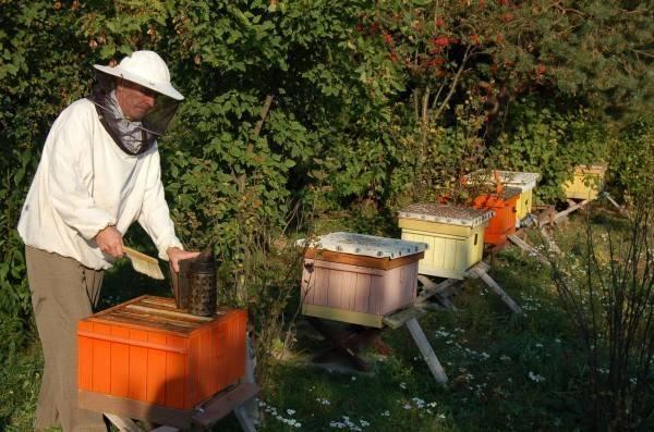 Pszczelarstwo to największa pasja Zbigniewa Palucha.