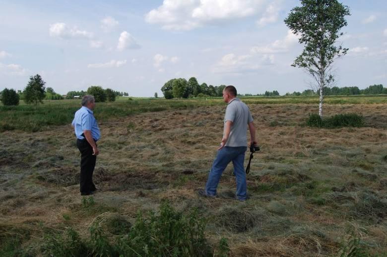 Ozierany Małe. Bezmyślny rolnik zniszczył siedliska ptaków (zdjęcia)