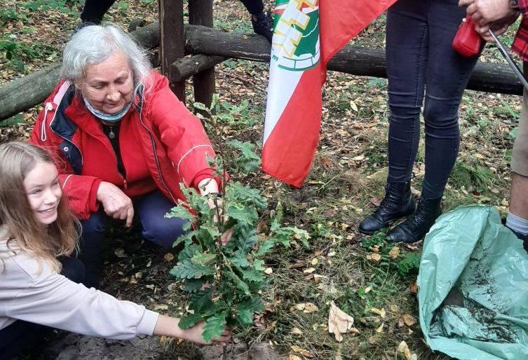 Zasadzili Drzewa Dziedzictwa Polskiego Towarzystwa Turystyczno-Krajoznawczego [ZDJĘCIA]