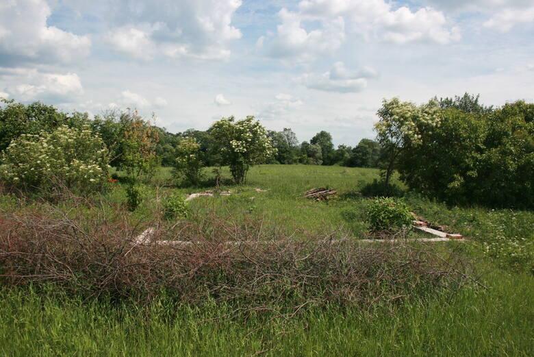 Przed wojną we Włęczu było 50 gospodarstwa, murowana szkoła, kaplica, dom modlitwy. Dziś zostało z tego raptem kilka domów. O istnieniu innych przypominają pozostałości sadów oraz wystające z trawy fundamenty.
