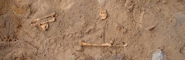 Makabryczne znalezisko w lesie. Natrafiono na szczątki kilku osób. Kim byli ci ludzie?