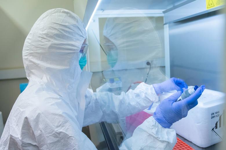 Bez wahania! Tak 58 osób podjęło się stworzenia pierwszego polskiego testu na koronawirusa [ROZMOWA]