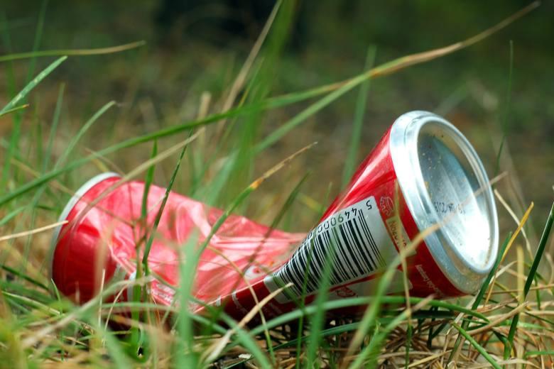 Jak wskazują badania, rocznie Polacy zużywają ok. 650 tysięcy ton plastikowych opakowań, z czego zaledwie 30% trafia do recyklingu. Najgorzej, gdy śmieci