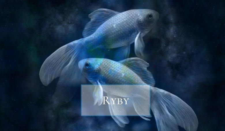 Artystyczne Ryby są niezwykle delikatne. Wrażliwcy, przeczuleni na swoim punkcie. Jeśli ktoś je skrytykuje, potrafią długo chować urazę. W swoim związku