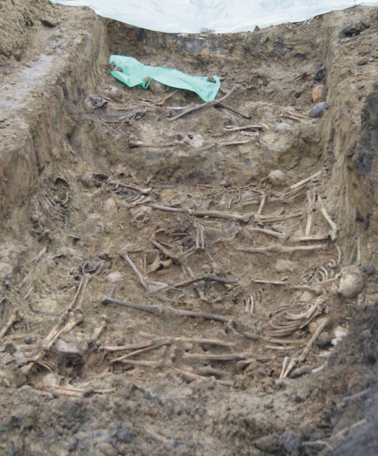 Prace ekshumacyjnej przy ul. Cegielnianej w Przemyślu, w październiku 2014 r.