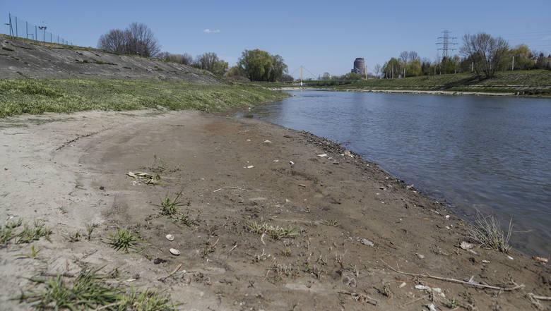 Z dnia na dzień opada poziom wody w Wisłoku. Tak w czwartek wyglądała rzeka w Rzeszowie. Czy czeka nas największa od lat susza?PRZECZYTAJ TEŻ: Najpierw