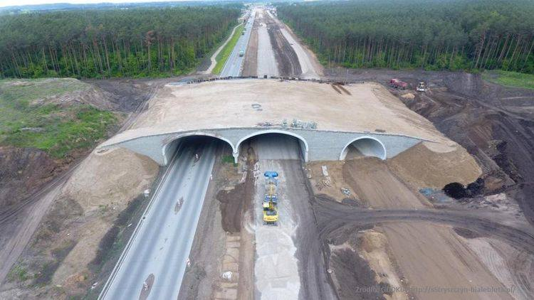 Bydgoski ratusz informuje o postępach prac na trasie S5 pod Bydgoszczą. Przy zachodniej obwodnicy Bydgoszczy trwają intensywne prace, które mają pozwolić