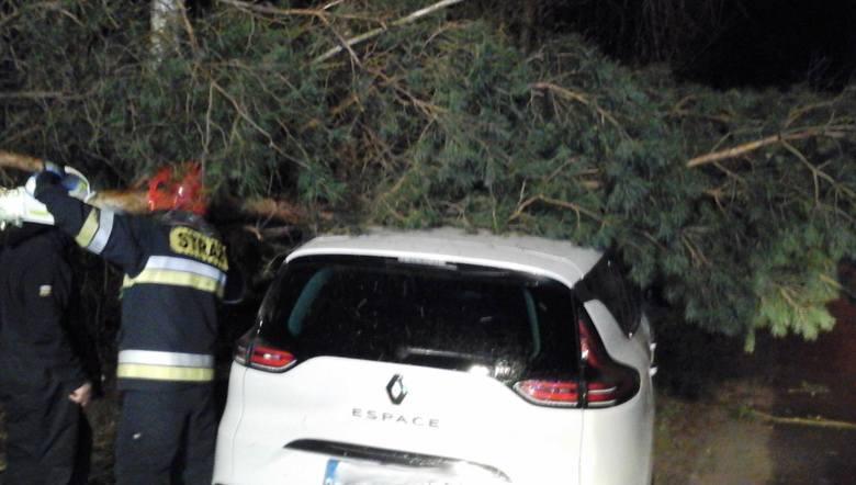Burza w Kujawsko-Pomorskiem: ponad 40 interwencji strażaków, 15 uszkodzonych dachów, 1 osoba ranna