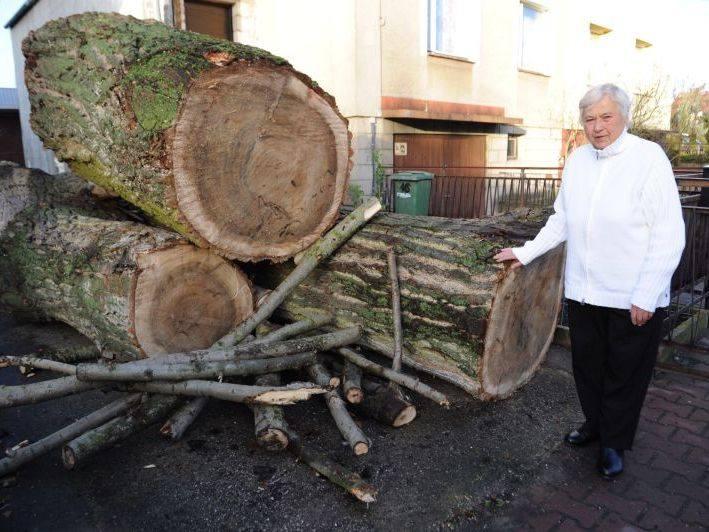 Starsza kobieta, mieszkanka Polic zwróciła się o pomoc do Ośrodka Pomocy Społecznej. Pani Stefania poprosiła o opał na zimę. MOPS przekazał starszej