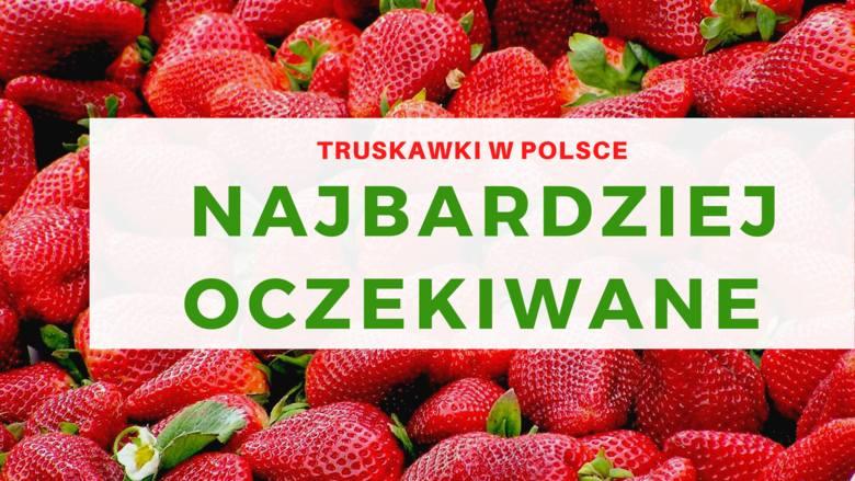 Najbardziej oczekiwaneTruskawka, to owoc wymieniany na pierwszym miejscu przez 65 proc. badanych, gdy pytamy o to właśnie, na który sezonowy owoc najbardziej