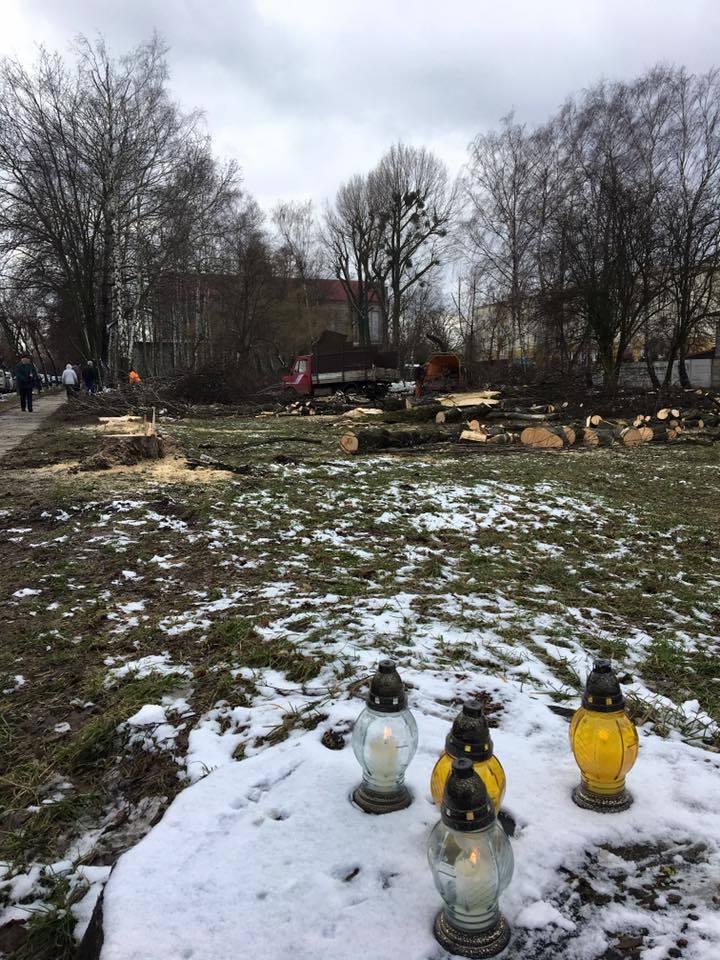 W miejscu, gdzie drzewa zostały wycięte, mieszkańcy palą znicze