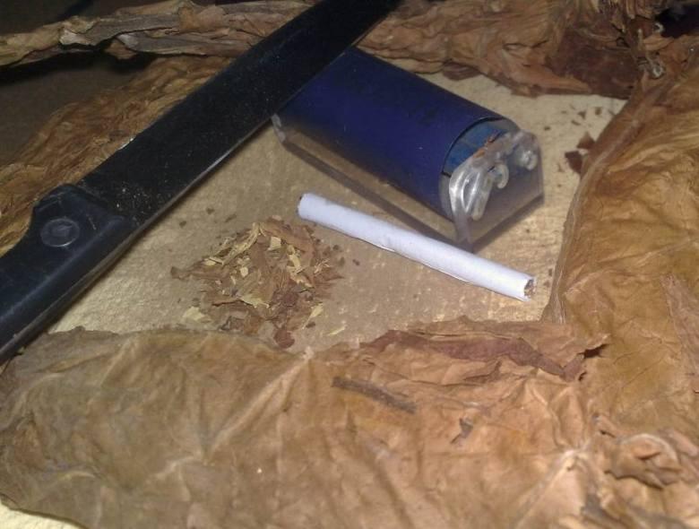 Palić się chce, a na liście obowiązuje już akcyzaPolak potrafi, gdy papierosy drogie, to robił je sobie sam. Wystarczył tytoń bez akcyzy, nóż, bibułka