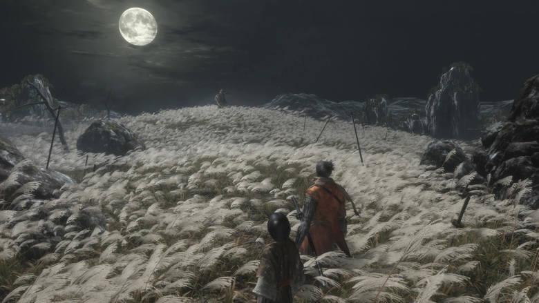 Sekiro: Shadows Die Twice to nowa gra of From Software