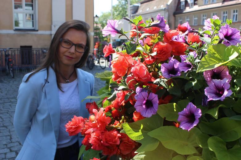 Międzyrzecz w kwiatach