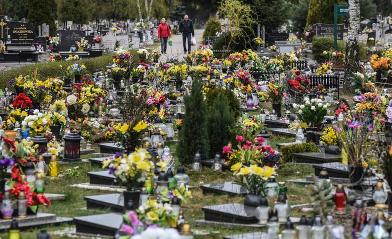 Co można znaleźć na cmentarzu? Majtki i prezerwatywy