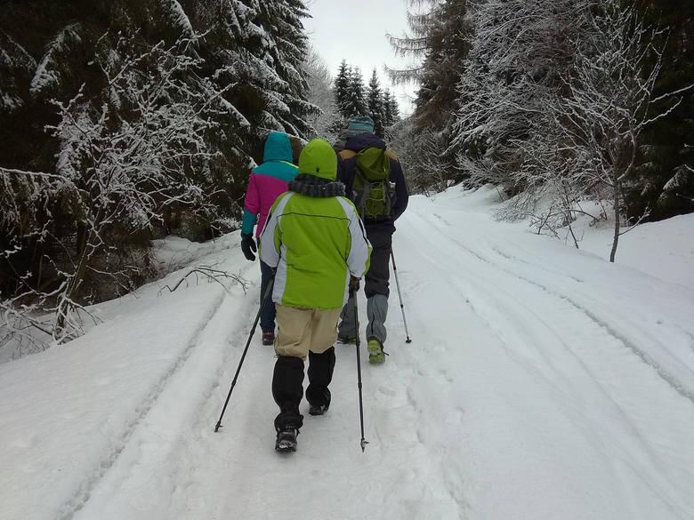 Przez lata wielkopostną tradycją była droga krzyżowa na Tarnicę. W ubiegłym roku dyrekcja Bieszczadzkiego Parku Narodowego uznała, że Tarnica musi odpocząć.