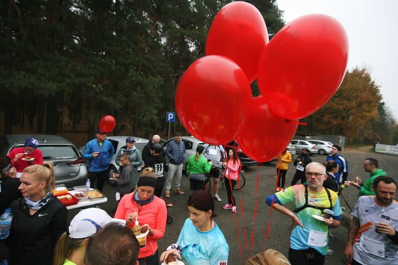 Biegniemy dla Majeczki – pod taki hasłem w niedzielę o godz. 10:00 na Dzikiej Ochli w Zielonej Górze miejscowi biegacze zorganizowali trening charytatywny