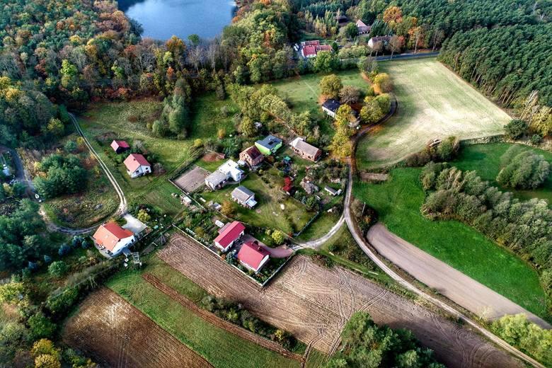 Jezioro Linie (Liny) Małe leżą mniej więcej w połowie drogi łączącej Babimost z Kargową