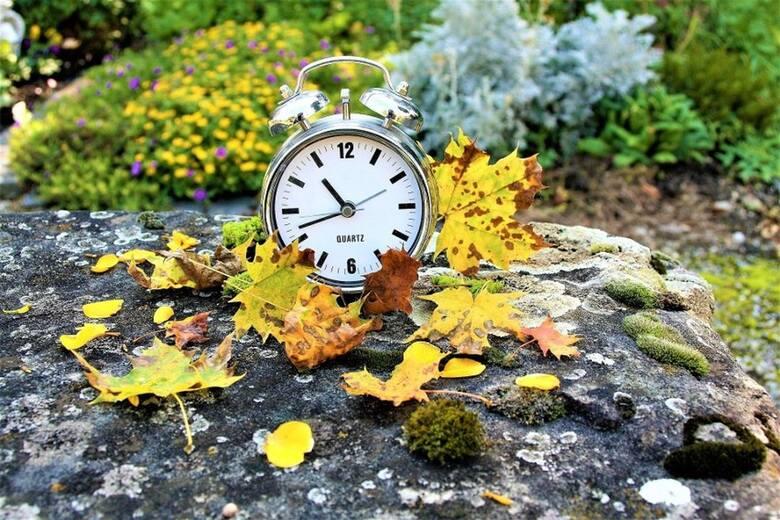 Zmiana czasu 2021. Kiedy nastąpi zmiana czasu z letniego na zimowy? W którą stronę przestawiamy zegarki?