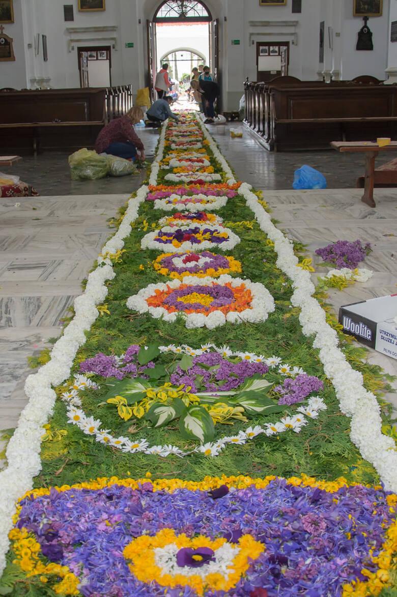 Mieszkańcy Urzędowa na uroczystość Bożego Ciała ułożyli 45-metrowy dywan z kwiatów