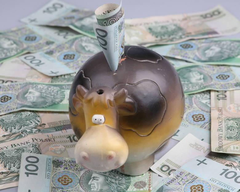 Pracownicze Plany Kapitałowe – dodatkowy koszt dla firm realną szansą dla przyszłych emerytów?