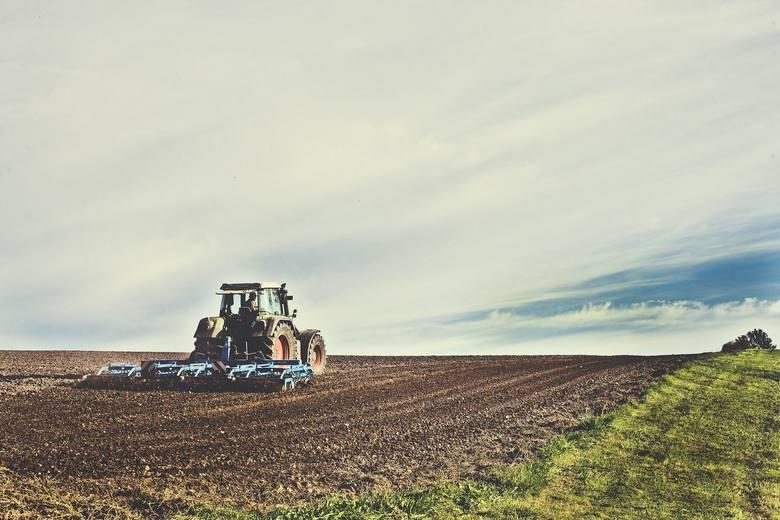Ministerstwo rolnictwa publikuje zasady dla rolników. Jeśli odbywają kwarantannę w domu, czyli są zdrowi, ale mieli kontakt z osobą chorą lub właśnie