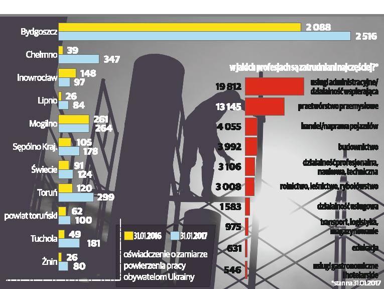 Ukraińcy pracy się nie boją [infografika]