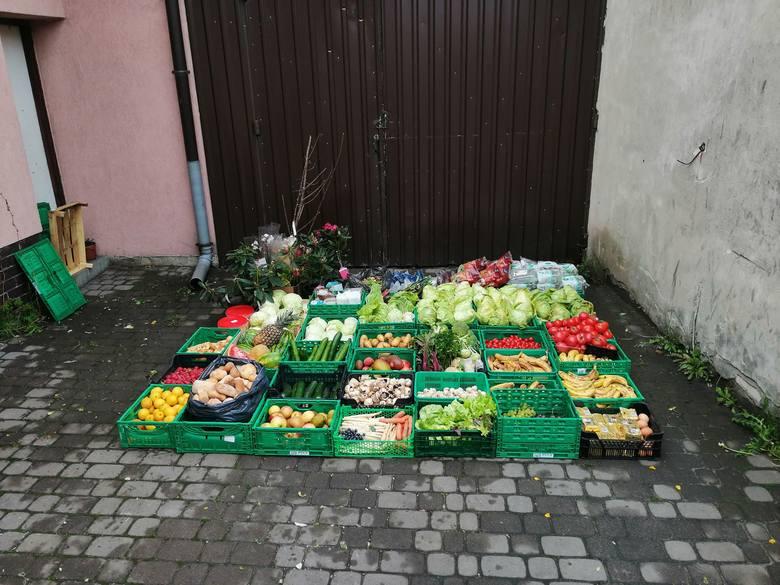 Freeganie ratują jedzenie, które wyrzucają dyskonty. Jak tłumaczą marnowanie jedzenia sklepy i markety?
