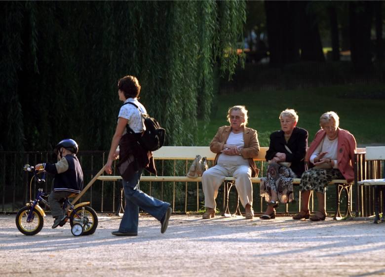 Już wkrótce wypłata trzynastej emerytury 2021. Mimo pandemii koronawirusa, rząd wielokrotnie zapewniał, że wypłata trzynastej emerytury nie jest zagrożona.