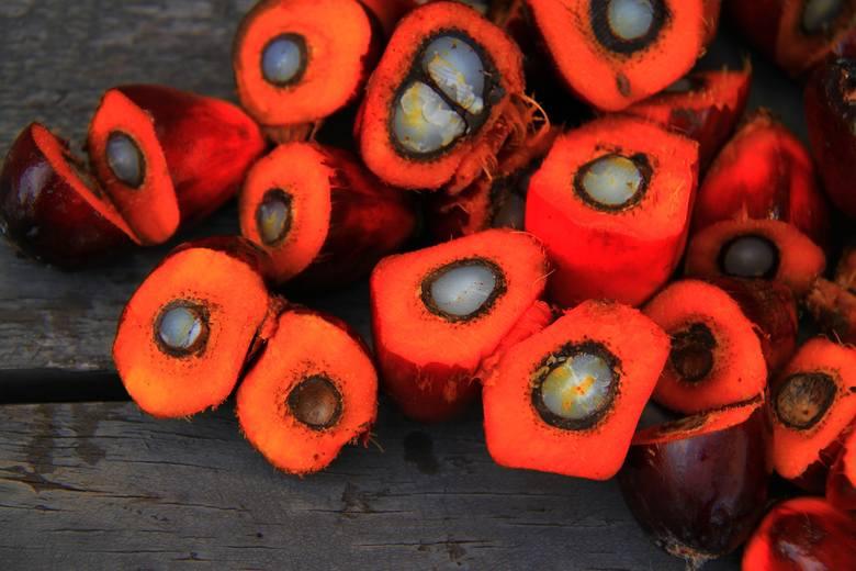 Olej palmowy pozyskuje się z nasion i miąższu rośliny nazywanej olejowcem gwinejskim.