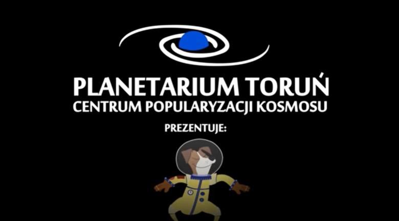 Seans jest w repertuarze toruńskiego Planetarium od blisko dwóch lat. Tymczasem w październiku obrońcy zwierząt zarzucili twórcom pokazu, że nie uczą