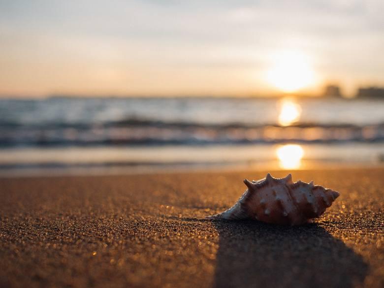 Para Francuzów próbowała wywieźć 40 kg białego piasku z plaży w Sardynii.